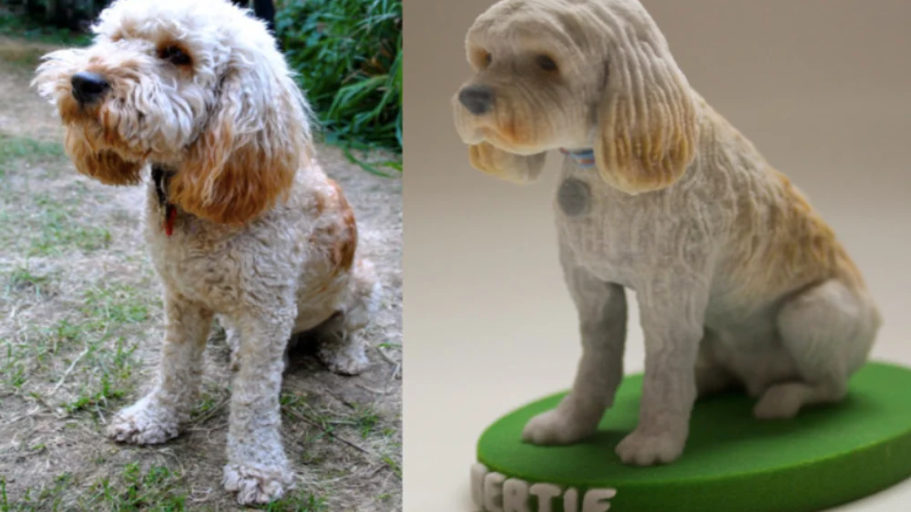 How to Print a 3D Model of My Dog?