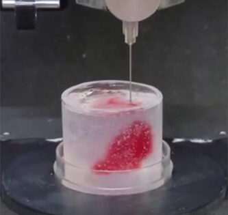 Scientists at the University of Minnesota Have 3D Printed A Beating Heart Muscle 'Pump'